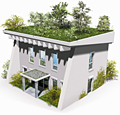 green roof graphic