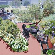 Former First Lady touts LAND student's rooftop garden design