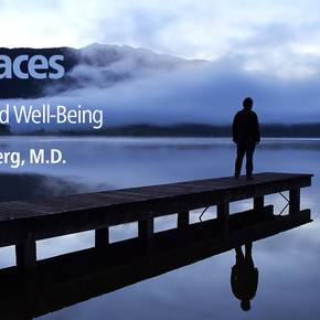 Renowned scholar discussed link between place and well-being