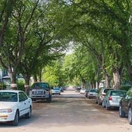 LAND prof studies tree shade's impact during heat waves
