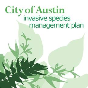 LAUP alums help shape city of Austin invasive species strategy