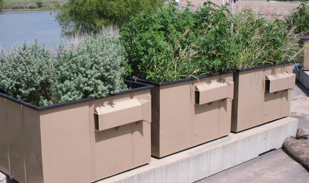 Effort aimed at pollutants from stormwater - ArchONE